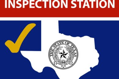TEXAS STATE INCPECTION